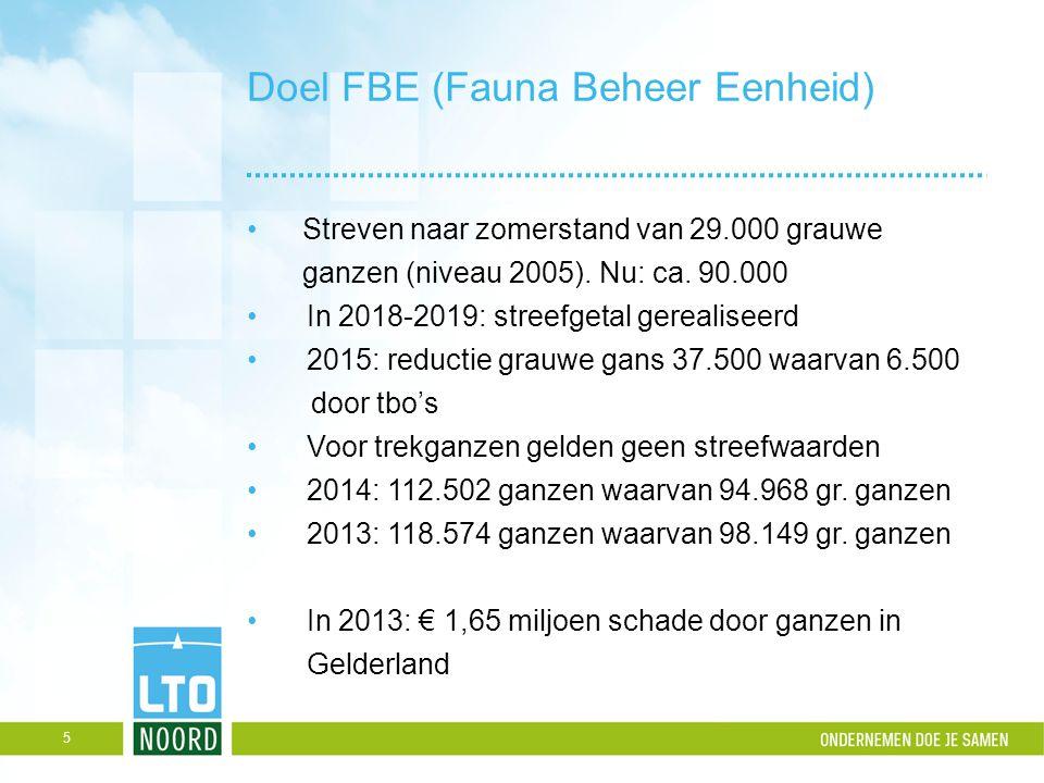 Doel FBE (Fauna Beheer Eenheid) Streven naar zomerstand van 29.000 grauwe ganzen (niveau 2005). Nu: ca. 90.000 In 2018-2019: streefgetal gerealiseerd