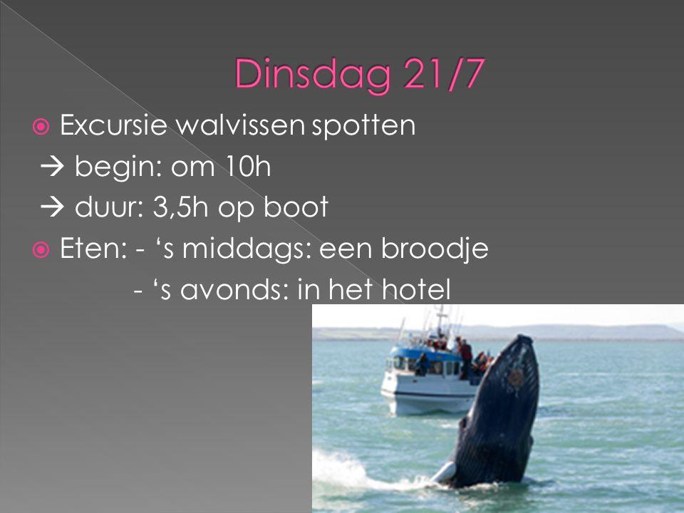 Excursie walvissen spotten  begin: om 10h  duur: 3,5h op boot  Eten: - 's middags: een broodje - 's avonds: in het hotel