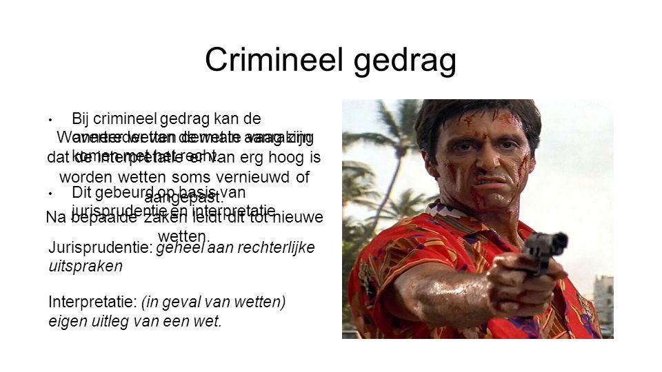 Crimineel gedrag Bij crimineel gedrag kan de overtreder van de wet in aanraking komen met het recht. Dit gebeurd op basis van jurisprudentie en interp