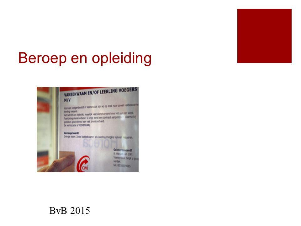 Beroep en opleiding BvB 2015