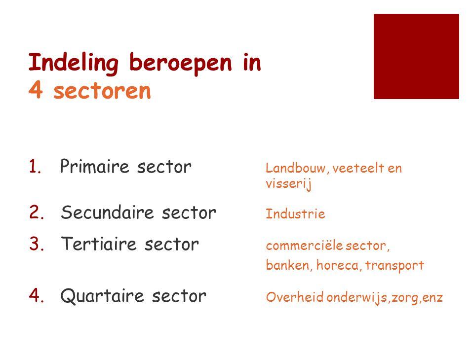 Indeling beroepen in 4 sectoren 1.Primaire sector Landbouw, veeteelt en visserij 2.Secundaire sector Industrie 3.Tertiaire sector commerciële sector,