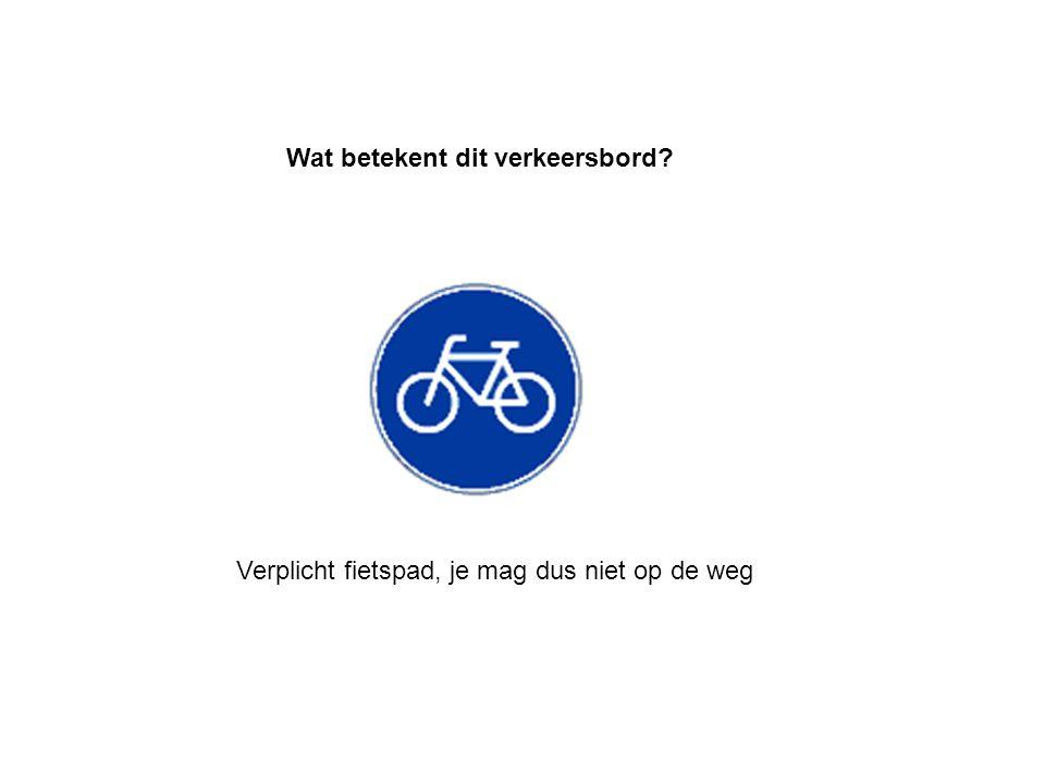 Einde verplicht fietspad. Wat betekent dit verkeersbord?