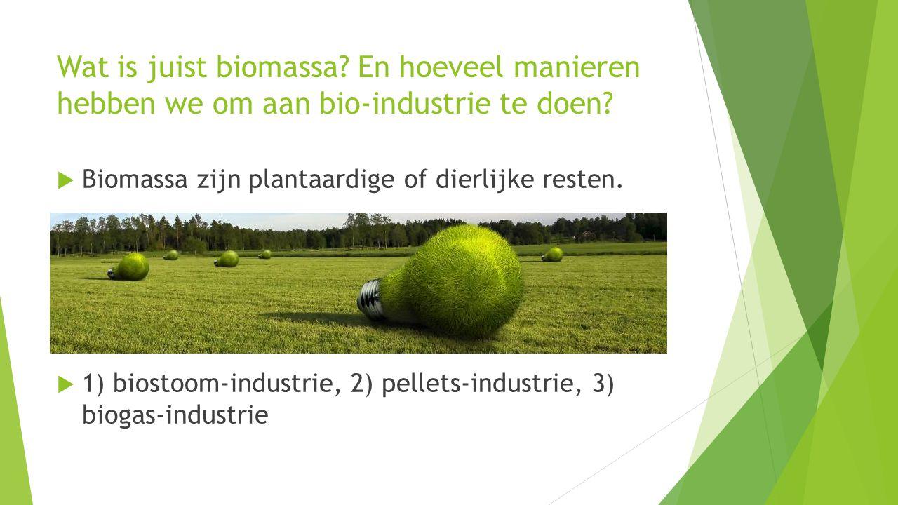 Wat is juist biomassa? En hoeveel manieren hebben we om aan bio-industrie te doen?  Biomassa zijn plantaardige of dierlijke resten.  1) biostoom-ind