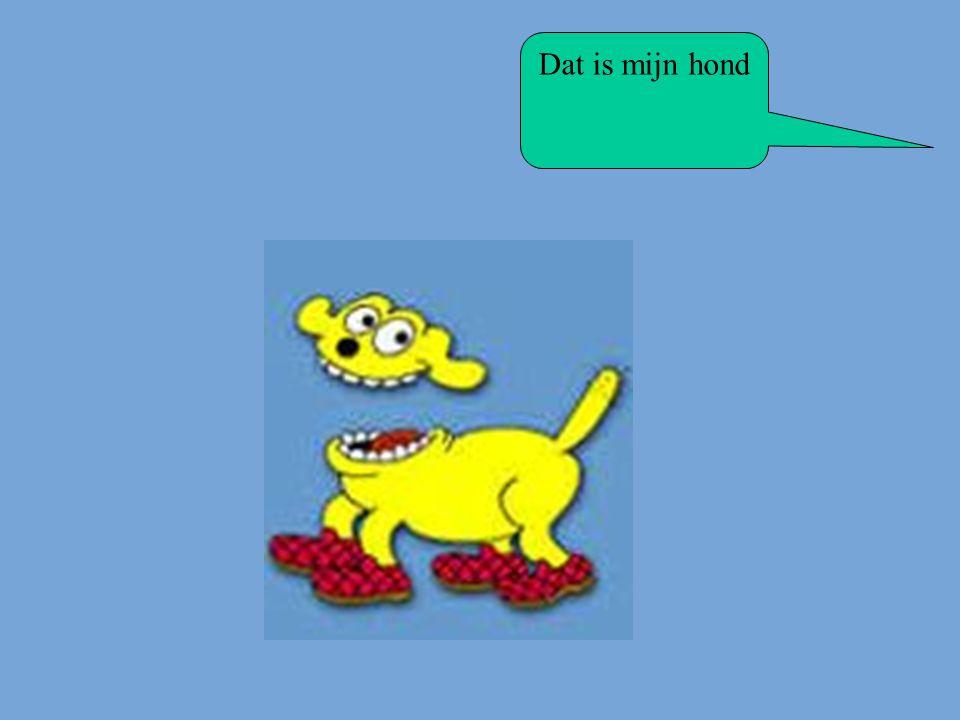 Dat is mijn hond