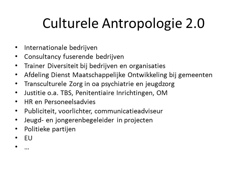 Culturele Antropologie 2.0 Internationale bedrijven Consultancy fuserende bedrijven Trainer Diversiteit bij bedrijven en organisaties Afdeling Dienst
