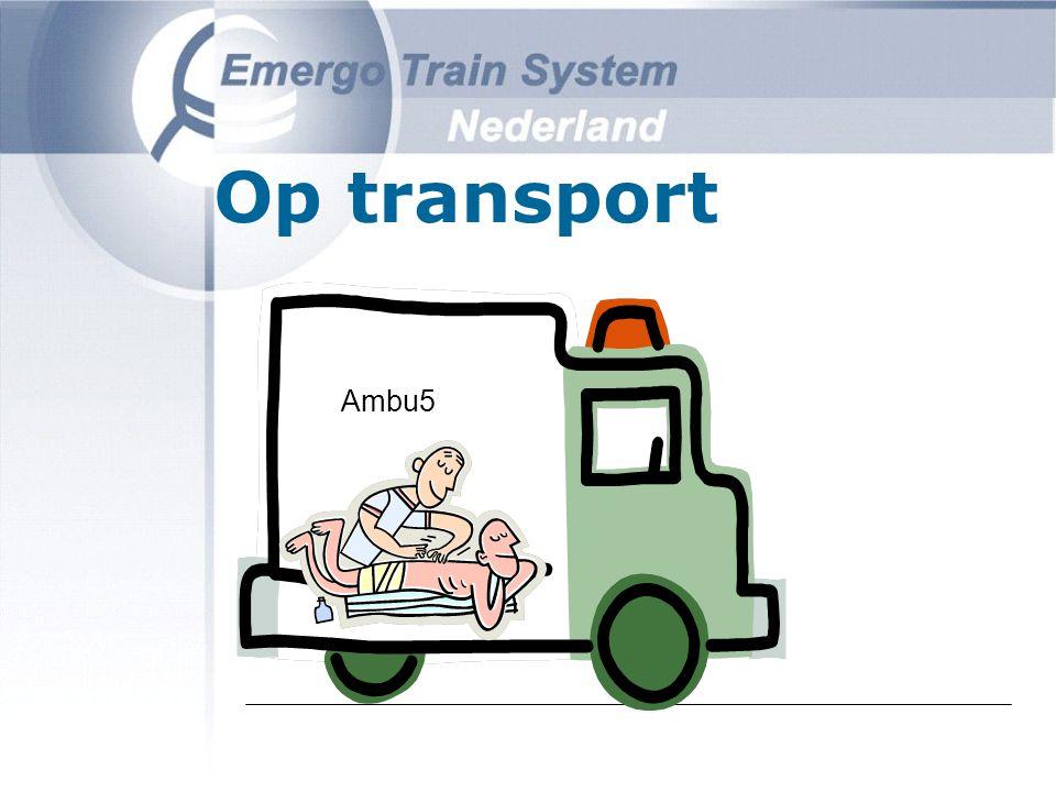 Hospitaal SMH-keten SEH opvang operatie intensieve verzorging verpleging revalidatie 6.