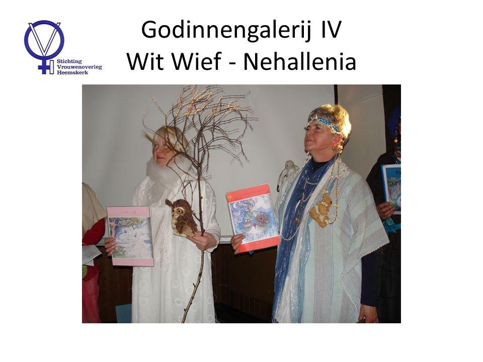 Godinnengalerij V Tanfana – Holle