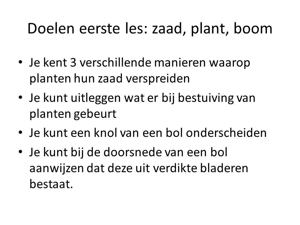 Doelen eerste les: zaad, plant, boom Je kent 3 verschillende manieren waarop planten hun zaad verspreiden Je kunt uitleggen wat er bij bestuiving van
