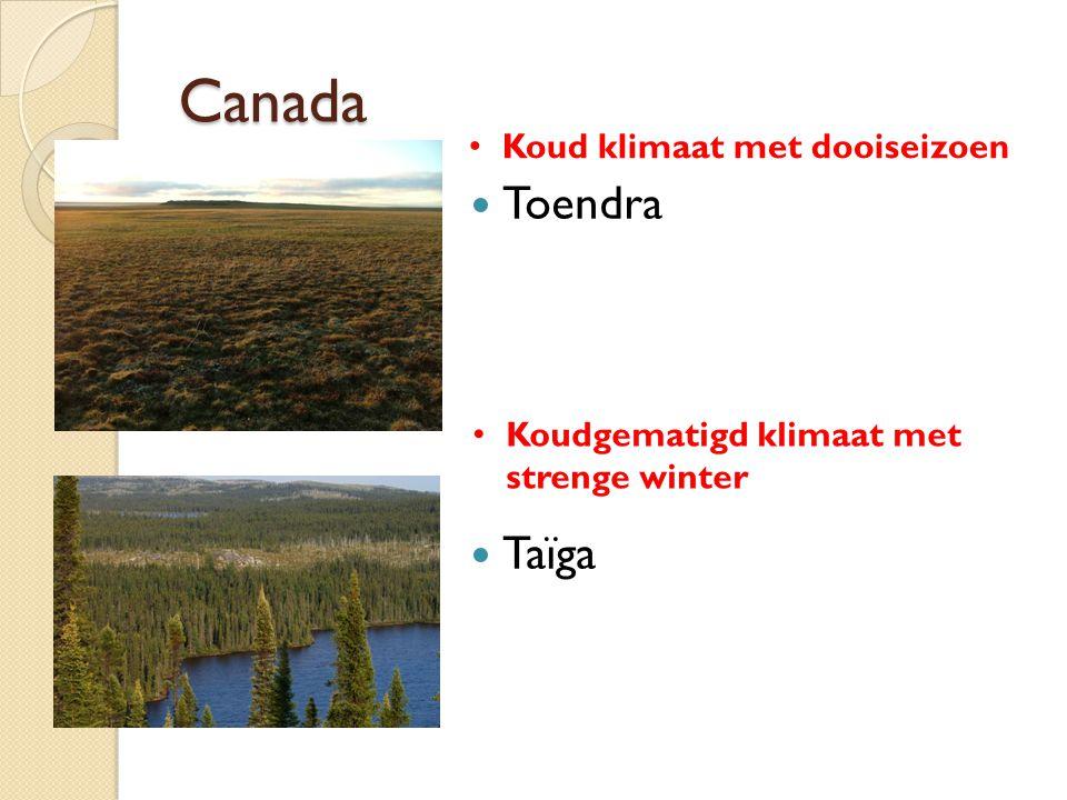 Canada Toendra Taïga Koud klimaat met dooiseizoen Koudgematigd klimaat met strenge winter