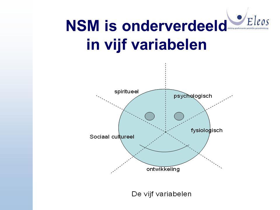 NSM is onderverdeeld in vijf variabelen