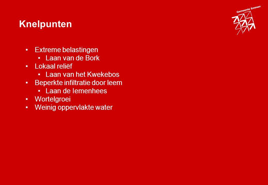 Knelpunten Extreme belastingen Laan van de Bork Lokaal reliëf Laan van het Kwekebos Beperkte infiltratie door leem Laan de Iemenhees Wortelgroei Weinig oppervlakte water