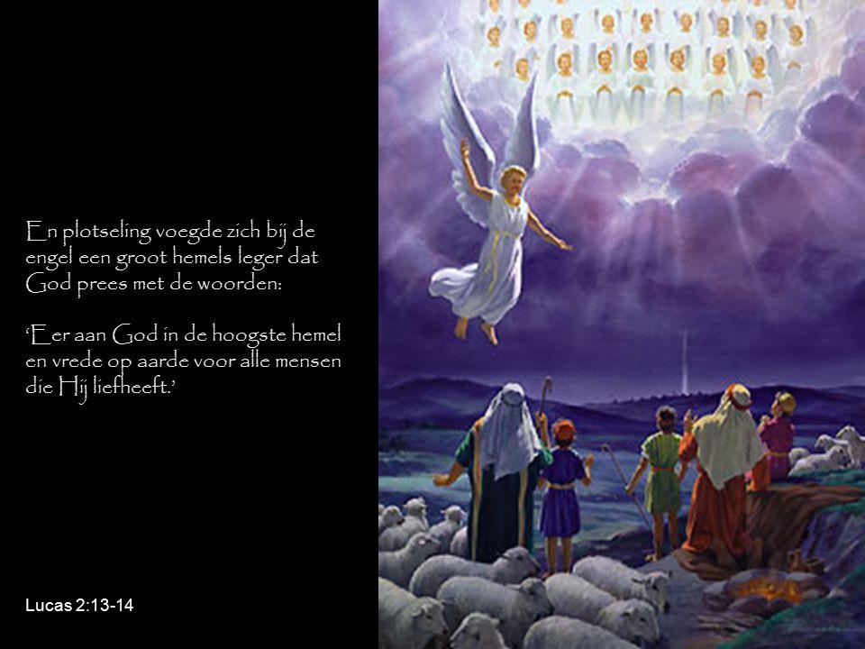 En plotseling voegde zich bij de engel een groot hemels leger dat God prees met de woorden: 'Eer aan God in de hoogste hemel en vrede op aarde voor alle mensen die Hij liefheeft.' Lucas 2:13-14