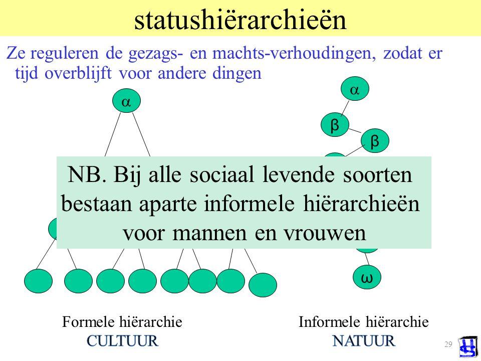 29 statushiërarchieën Ze reguleren de gezags- en machts-verhoudingen, zodat er tijd overblijft voor andere dingen  β β ω β β  NB.