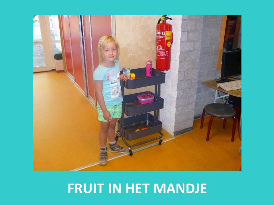 FRUIT IN HET MANDJE