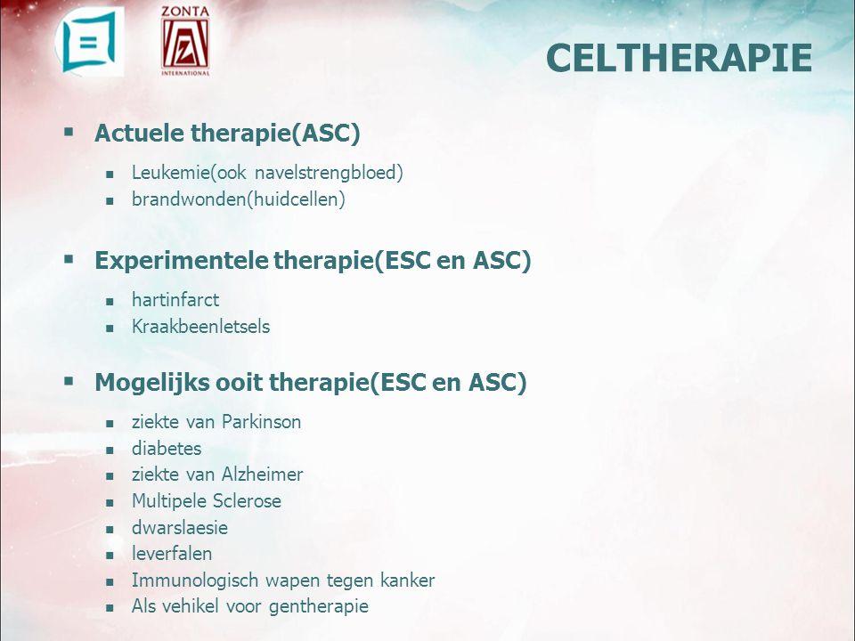  Actuele therapie(ASC) Leukemie(ook navelstrengbloed) brandwonden(huidcellen)  Experimentele therapie(ESC en ASC) hartinfarct Kraakbeenletsels  Mogelijks ooit therapie(ESC en ASC) ziekte van Parkinson diabetes ziekte van Alzheimer Multipele Sclerose dwarslaesie leverfalen Immunologisch wapen tegen kanker Als vehikel voor gentherapie CELTHERAPIE