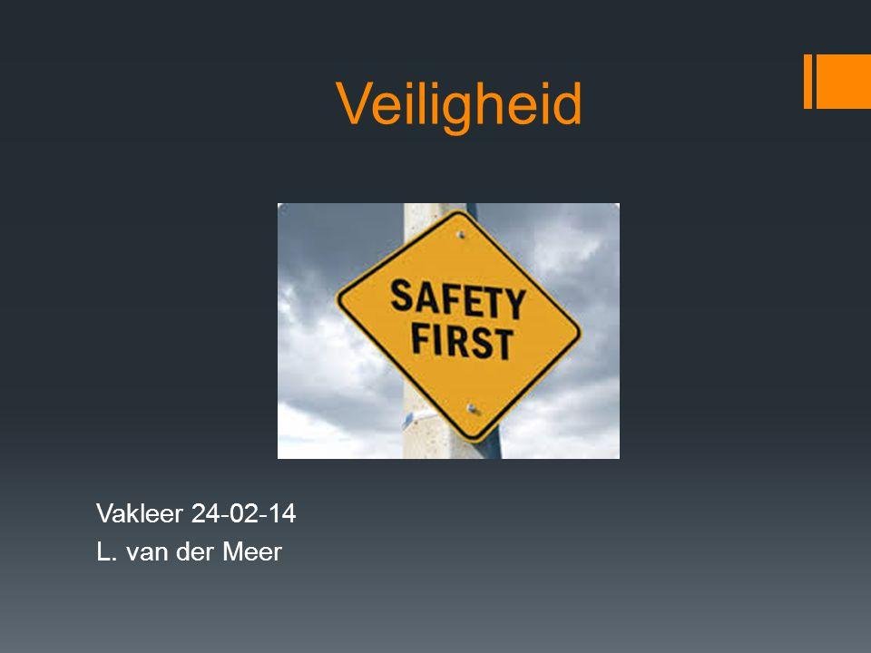 Veiligheid Vakleer 24-02-14 L. van der Meer