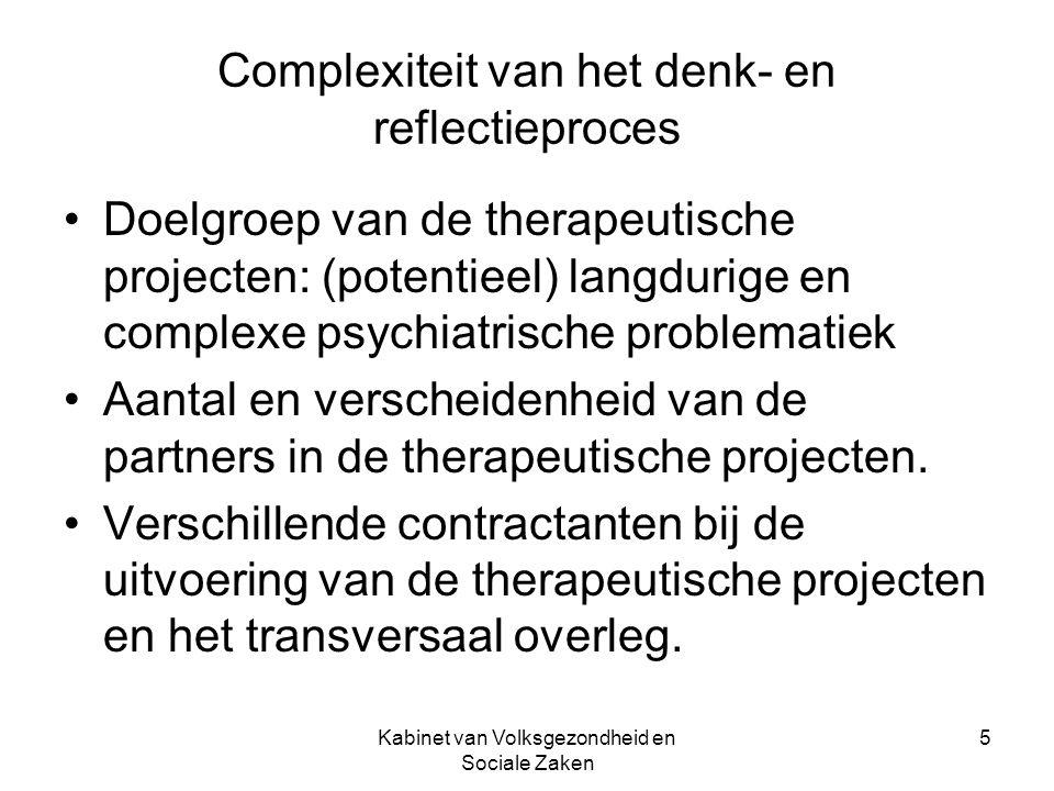 Kabinet van Volksgezondheid en Sociale Zaken 5 Complexiteit van het denk- en reflectieproces Doelgroep van de therapeutische projecten: (potentieel) l