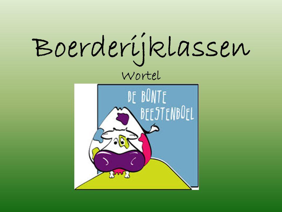 De Bonte Beestenboel vzw Kolonie 35 2323 Wortel www.debontebeestenboel.be