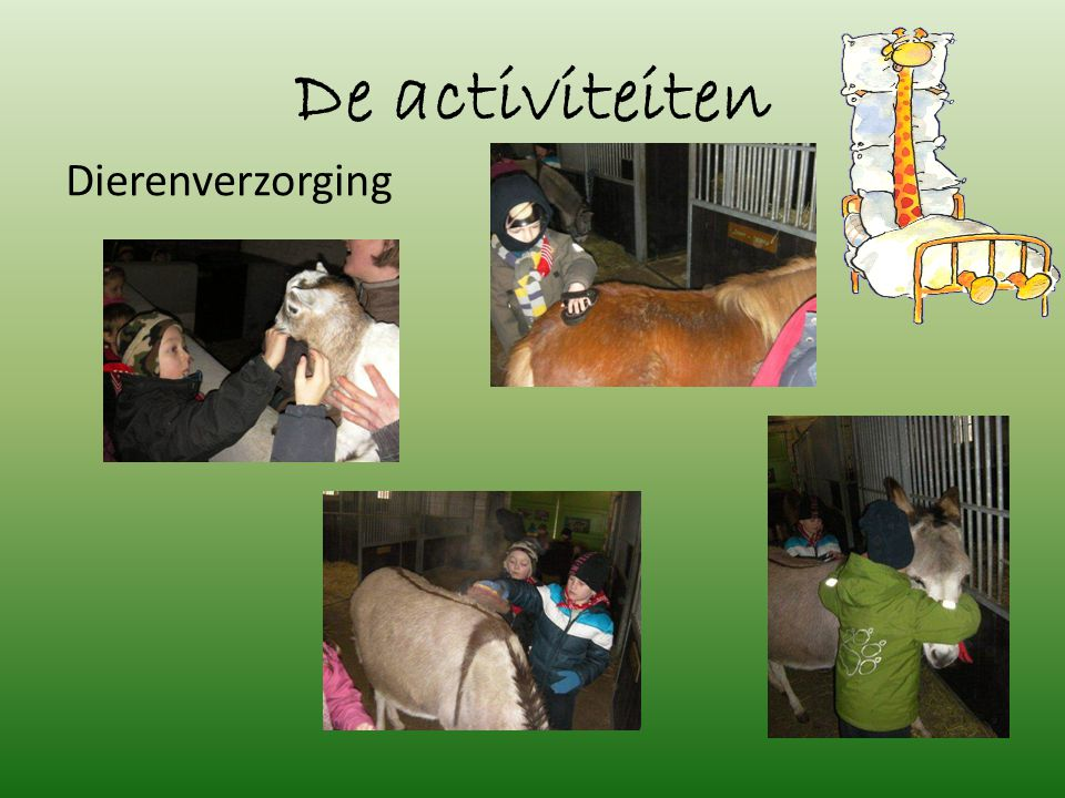 De activiteiten Graanverwerking