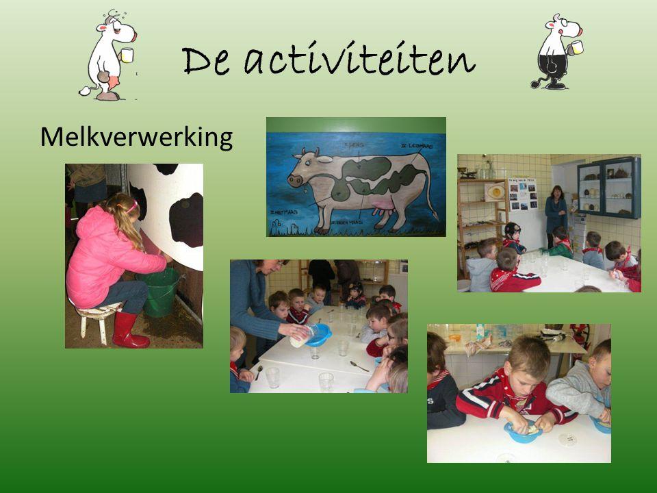 De activiteiten Melkverwerking