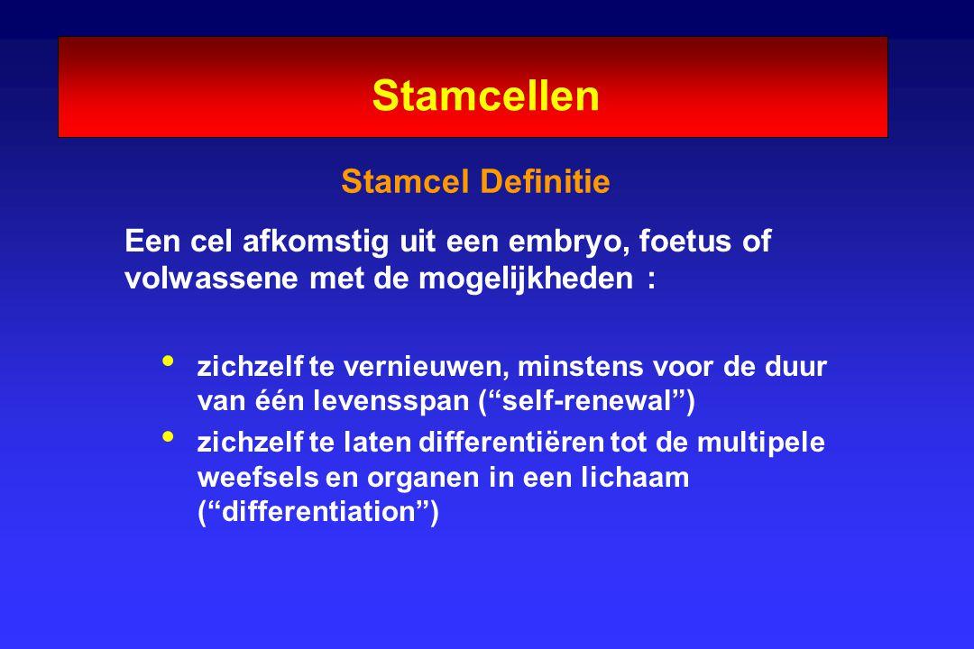 Stamcel Definitie Een cel afkomstig uit een embryo, foetus of volwassene met de mogelijkheden : zichzelf te vernieuwen, minstens voor de duur van één