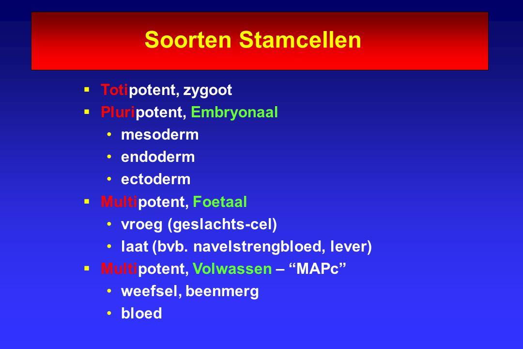 Soorten Stamcellen  Totipotent, zygoot  Pluripotent, Embryonaal mesoderm endoderm ectoderm  Multipotent, Foetaal vroeg (geslachts-cel) laat (bvb. n