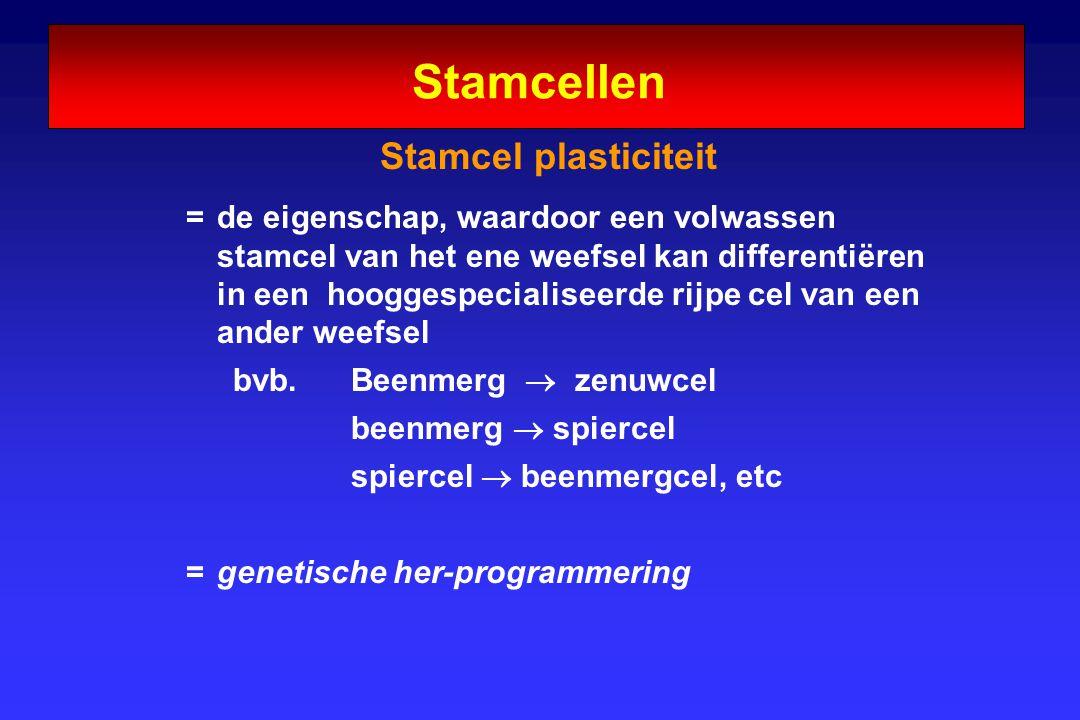 Stamcellen Stamcel plasticiteit = de eigenschap, waardoor een volwassen stamcel van het ene weefsel kan differentiëren in een hooggespecialiseerde rij