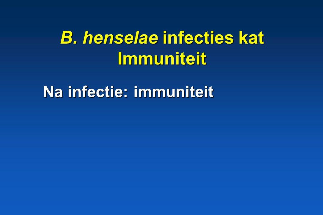 B. henselae infecties kat Pathogenese * Opname: ? * bacteremie