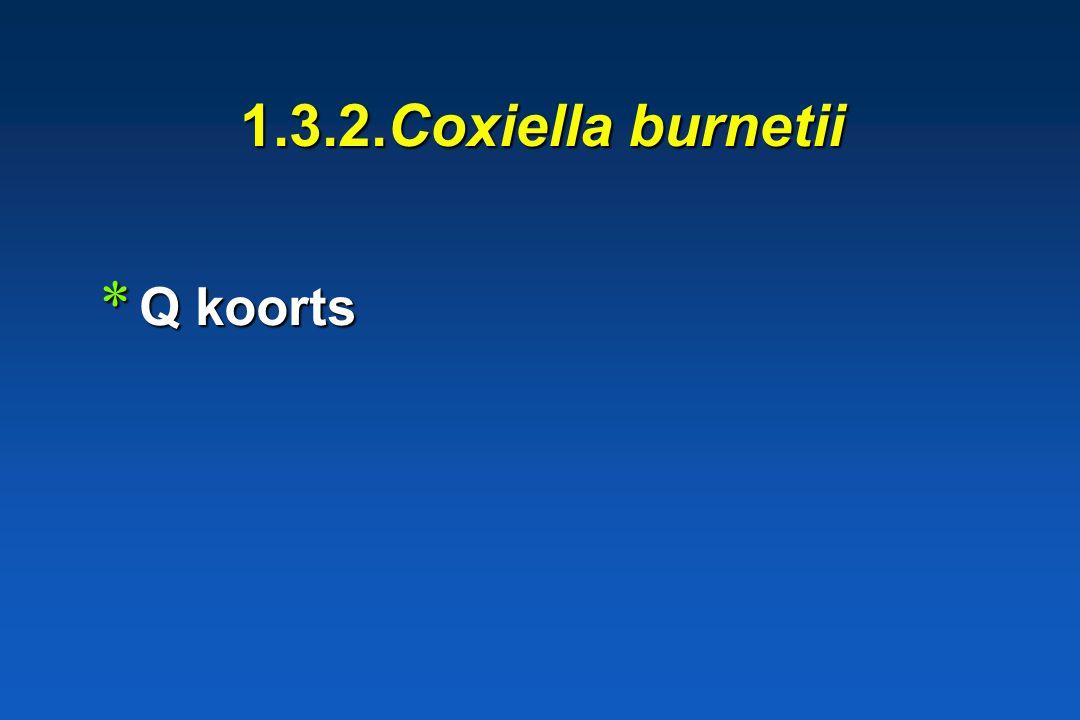 1.3.1. Genus Rickettsia