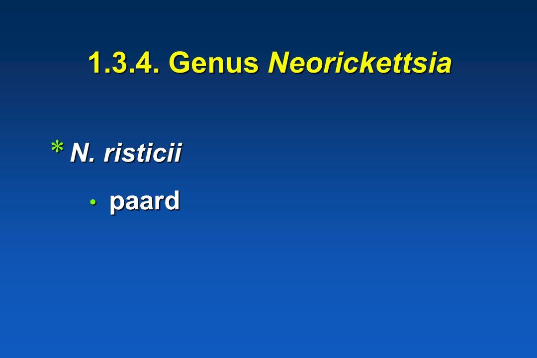 1.3.3. Genus Ehrlichia * E. canis * E. ruminantium