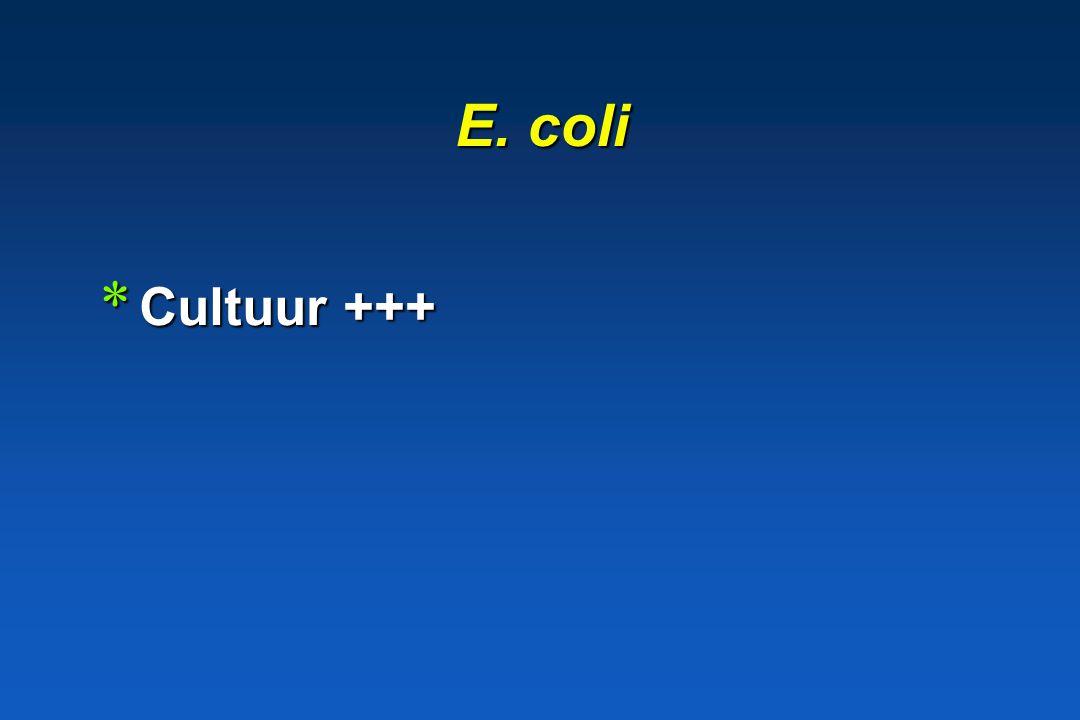 Genus Escherichia Escherichia coli * Morfologie Gram - kapselflagellenfimbriae