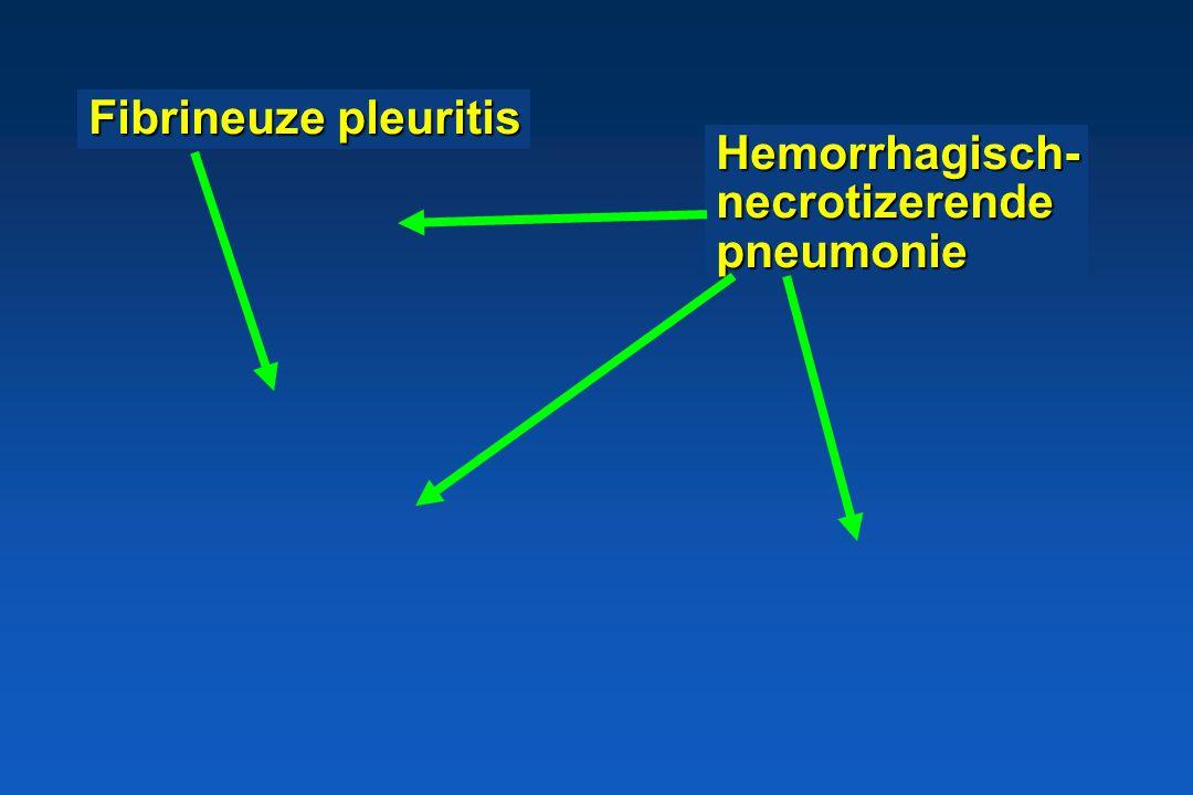Apx toxines * endotheel * alveolaire epitheelcellen * macrofagen en neutrofielen * rode bloedcellen