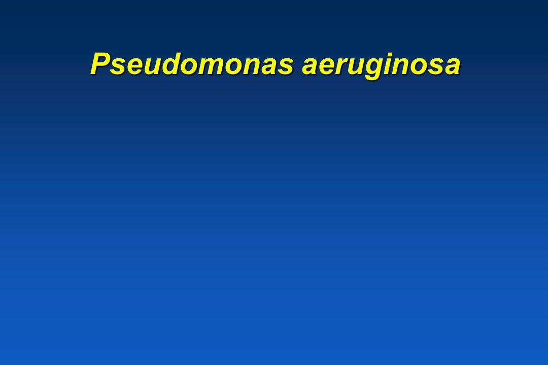 Proteobacteria GRAM NEGATIEF * Facultatief anaërobe Gr – * Aërobe en microaërofiele Gr- Genus Pseudomonas Genus Pseudomonas