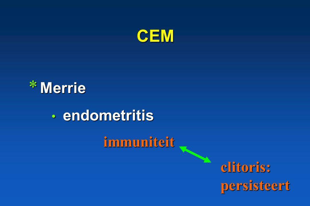 CEM * Merrie endometritis endometritis