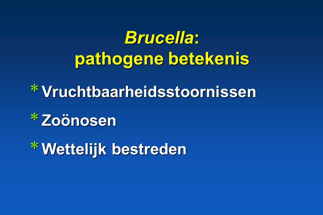 Brucella * Gram – * cultuur: + * obligaat symbiotisch, resistent * obligaat pathogeen * facultatief intracellulair