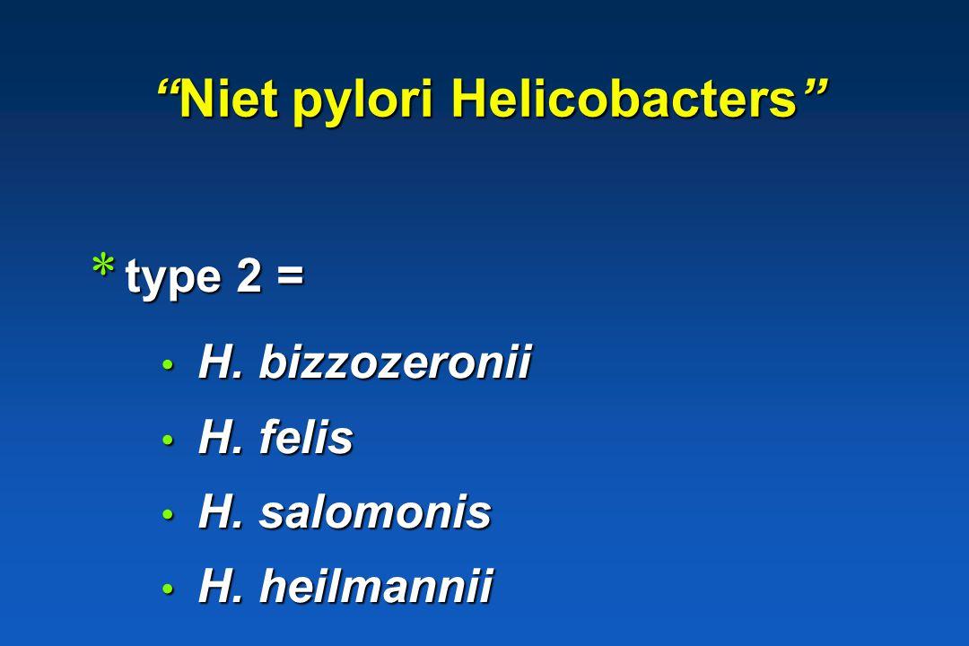 Niet pylori Helicobacters * type 1 = Helicobacter suis