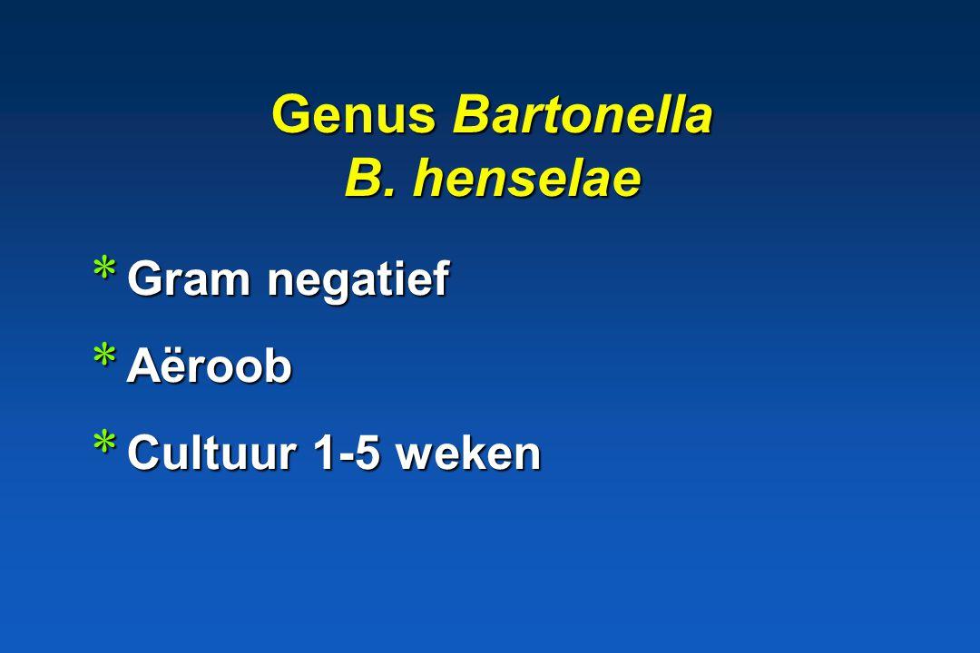 Helicobacter pathogene betekenis * Mens: maagulcera, maagkanker * Hond, kat: .