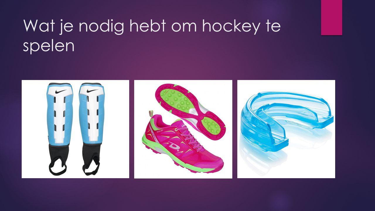 Wat je nodig hebt om hockey te spelen