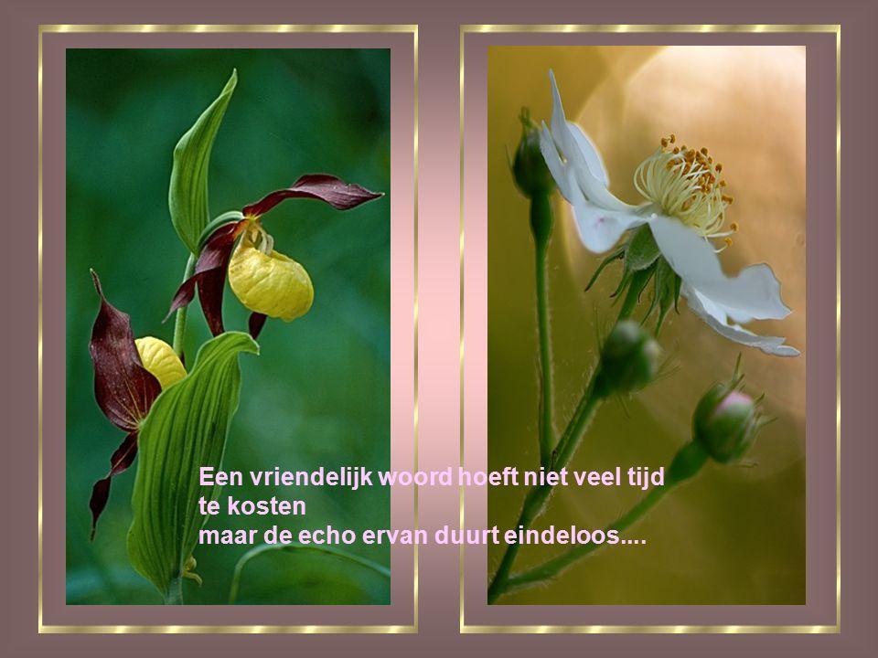 Een vriendelijk woord hoeft niet veel tijd te kosten maar de echo ervan duurt eindeloos....