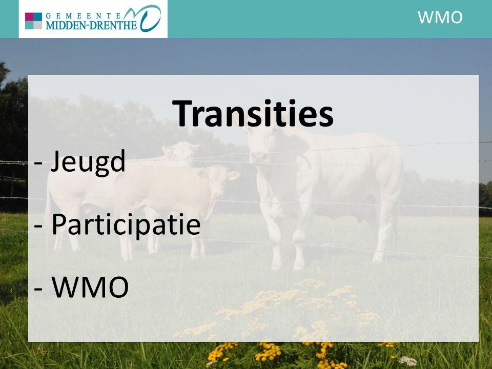WMO Transities - Jeugd - Participatie - WMO