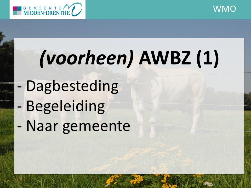 WMO (voorheen) AWBZ (1) - Dagbesteding - Begeleiding - Naar gemeente