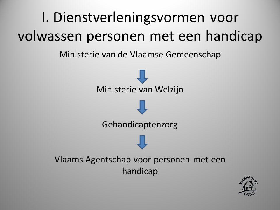 I. Dienstverleningsvormen voor volwassen personen met een handicap Ministerie van de Vlaamse Gemeenschap Ministerie van Welzijn Gehandicaptenzorg Vlaa