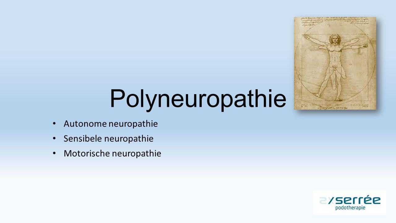 Polyneuropathie Autonome neuropathie Sensibele neuropathie Motorische neuropathie