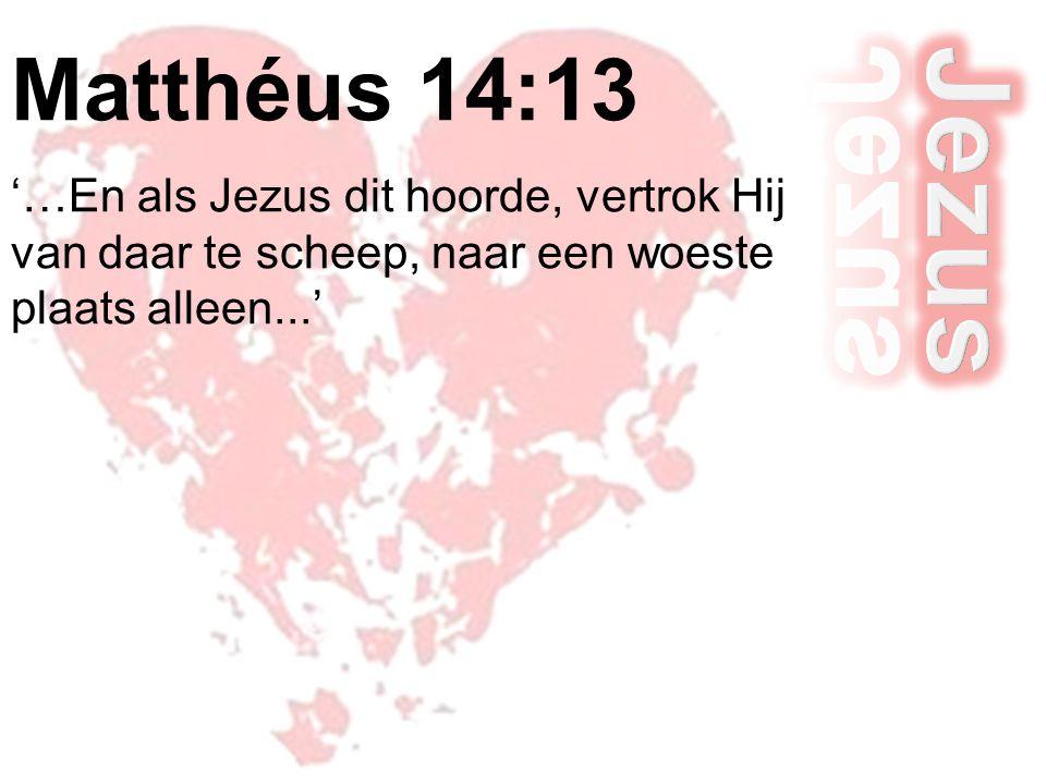 Matthéus 14:13 '…En als Jezus dit hoorde, vertrok Hij van daar te scheep, naar een woeste plaats alleen...'