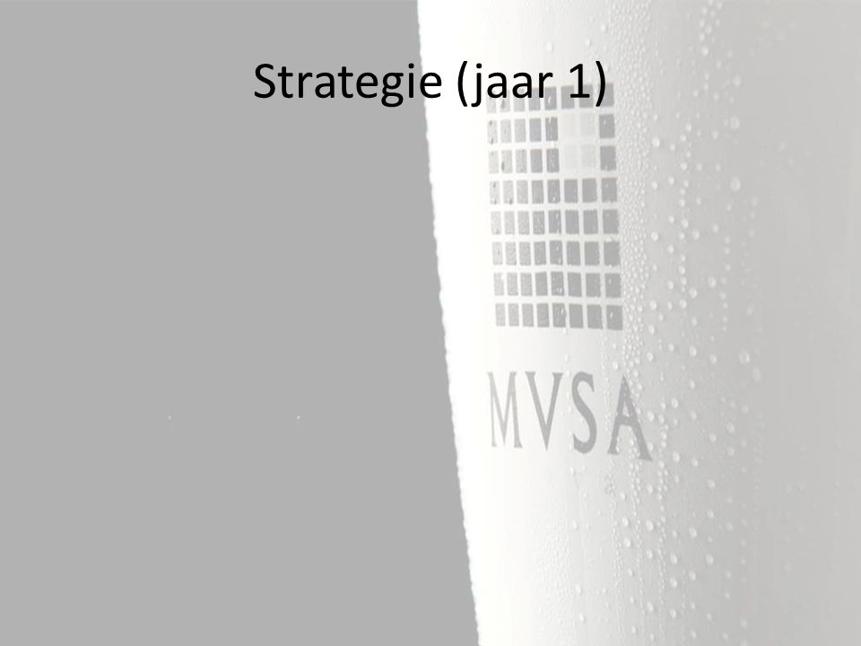 Strategie (jaar 1)
