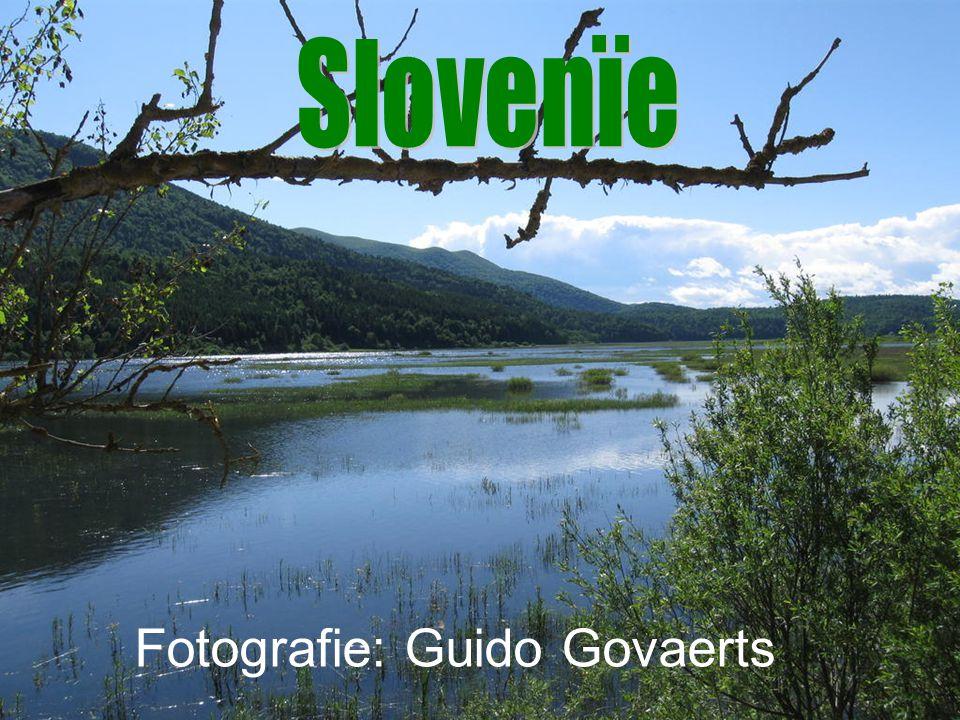 Fotografie: Guido Govaerts