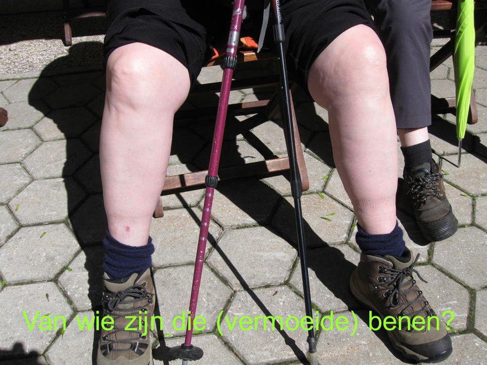 Van wie zijn die (vermoeide) benen?