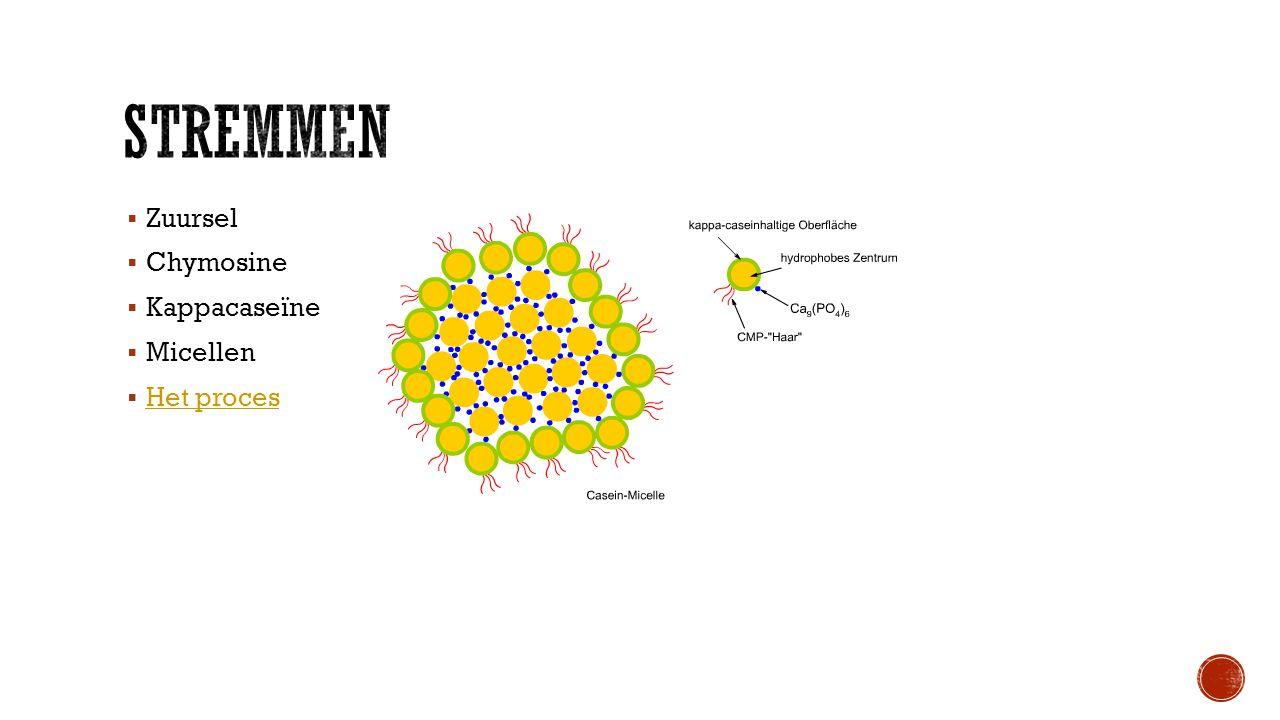  Zuursel  Chymosine  Kappacaseïne  Micellen  Het proces Het proces