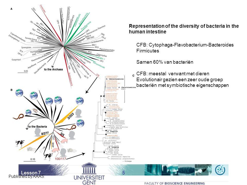 Lesson 75 Published by AAAS Representation of the diversity of bacteria in the human intestine CFB: Cytophaga-Flavobacterium-Bacteroides Firmicutes Samen 60% van bacteriën CFB: meestal verwant met dieren Evolutionair gezien een zeer oude groep bacteriën met symbiotische eigenschappen