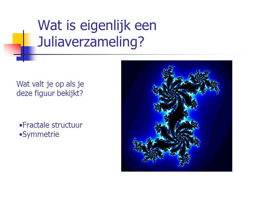 Wat is eigenlijk een Juliaverzameling? Wat valt je op als je deze figuur bekijkt? Fractale structuur Symmetrie